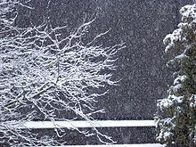 Schnee - 2005.JPG