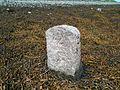 Seaweed Mearing Stone bearing the number 22, Island Eddy, Galway Bay.jpg