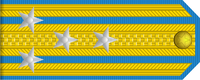 Senior Colonel rank insignia (North Korean police).png