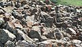 Sevaberd Fortress ruins (111).jpg