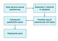 Sexualisation model.pdf
