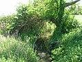 Shaded Beck, Skerne - geograph.org.uk - 1302745.jpg