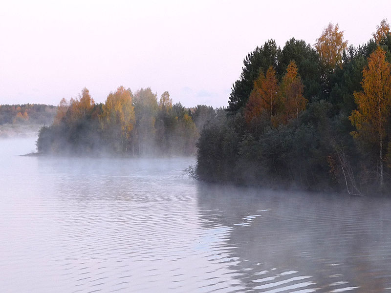 Файл:Sheksna River 01.jpg