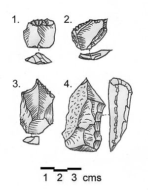 Qaa -  Shepherd Neolithic flint tools discovered at Kamouh el Hermel. 1. End scraper on a flake. 2. Transverse scraper and awl on a thin flake. 3. Borer on a flake blade. 4. Burin with a wide working edge on a heavy flake. All in matt brown flint.