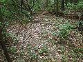 Siggelkow Park Mound.jpg