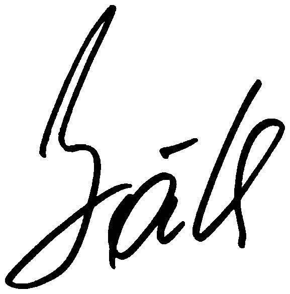 Traian Băsescu's signature