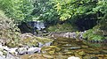 Silver River gorge, near Cadamstown, Co. Offaly. 21.jpg