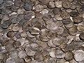 Silver coin hoard.jpg