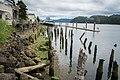 Siuslaw River-3.jpg