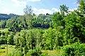 Slavkovský les u Bečova nad Teplou (1).jpg