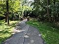 Sligo Creek Trail Kemp Mill 12.jpg