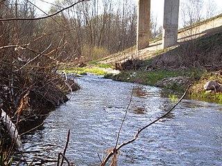 Smilga po kelio (144) Jonava-Šeduva  tiltu.Foto:Hugo.arg