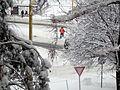 Sneh Prešov 17 Slovakia7.jpg