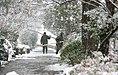 Snowy day of Tehran - 13 January 2007 (18 8510230258 L600).jpg