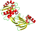 Soluble diacylglycerol kinase DgkB from Staphylococcus aureus.png