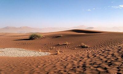 Sossusvlei Dune Rippled cropped.jpg