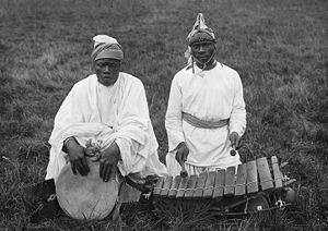 Percussion instrument - Djembé and balafon played by Susu people of Guinea