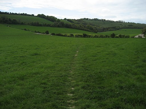 South Downs Way approaching Beacon Hill - geograph.org.uk - 1881281