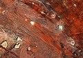 Southeast Namibia ESA390746.jpg