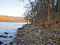 Southern shore of Loch Earn near Creagan Breac - geograph.org.uk - 679884.jpg