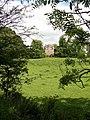 Spedlins Tower - geograph.org.uk - 679446.jpg