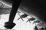 Spruce Goose-1.jpg