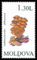 Stamp of Moldova 116 - 2.png