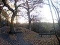Stanley Marsh Nature Reserve - geograph.org.uk - 1052913.jpg