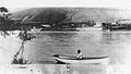 Steamers Harvest Queen and Almota, at Almota, WT 1880-02.jpg