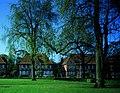Steenkoolmijn van Beringen, bediendenwoningen - 373975 - onroerenderfgoed.jpg