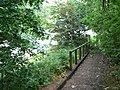 Steps down to Wilford Lane - geograph.org.uk - 1334309.jpg
