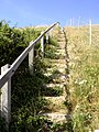 Steps up Emmetts Hill on the South West Coast Path, Isle of Purbeck - geograph.org.uk - 27877.jpg
