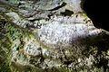 Sterkfontein Caves 38.jpg