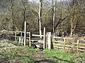 Stile and footpath sign, Hammer Lane, Chithurst - geograph.org.uk - 355198.jpg
