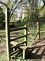 Stile from the Wye Valley Walk into Piercefield Park - geograph.org.uk - 489866.jpg