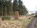 Stone Marker - geograph.org.uk - 137515.jpg