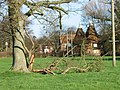 Storm damaged tree and oast house, Littlebourne. - geograph.org.uk - 317908.jpg