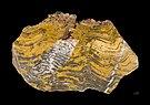 Stromatolithe Paléoarchéen - MNHT.PAL.2009.10.1.jpg