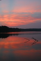 Pink clouds in a dark purple-blue sky are reflected in a smooth lake. At the horizon is a line of dark trees, and two branches stick out of the water in the middle of the image.