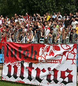Supporters FC Volyn Lutsk.jpg