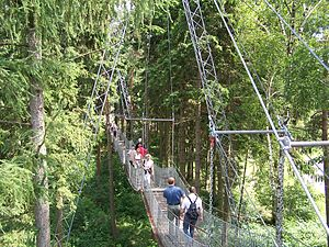 Suspension bridge at Serengeti-Park-Hodenhagen