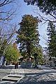 Suwa taisha Shimosha Akimiya , 諏訪大社 下社 秋宮 - panoramio (6).jpg