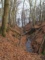 Swelina, Sopot - panoramio.jpg