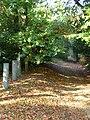 Sylvan Sylvanus Wood - geograph.org.uk - 589173.jpg