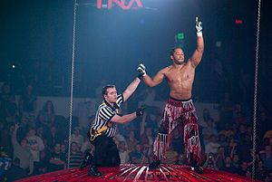 Jay Lethal and referee Rudy Charles on top of the Steel Asylum at Bound for Glory IV