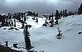 Taşeli-Plateau 05 04 1999 Suolmaz Gecidi 1690 m Dolinenfeld im Schnee.jpg