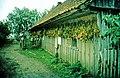 Tabakernte in Minge, 1996.jpg