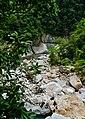 Taiwan Taroko-Schlucht Shakadang Trail 27.jpg