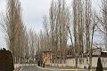 Tashkent city sights.jpg