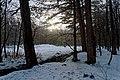 Texel - Eksterlaan - Winterview SW.jpg